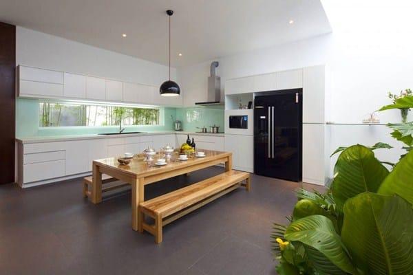 Maison végétalisée (3)