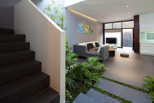 Maison végétalisée (5)
