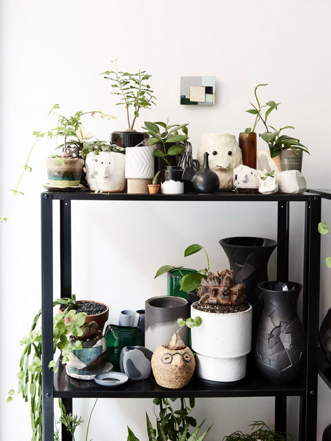 Un intérieur de collectionneur (10)
