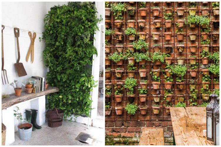 14 id 233 es pour d 233 corer sa maison avec des plantes vertes