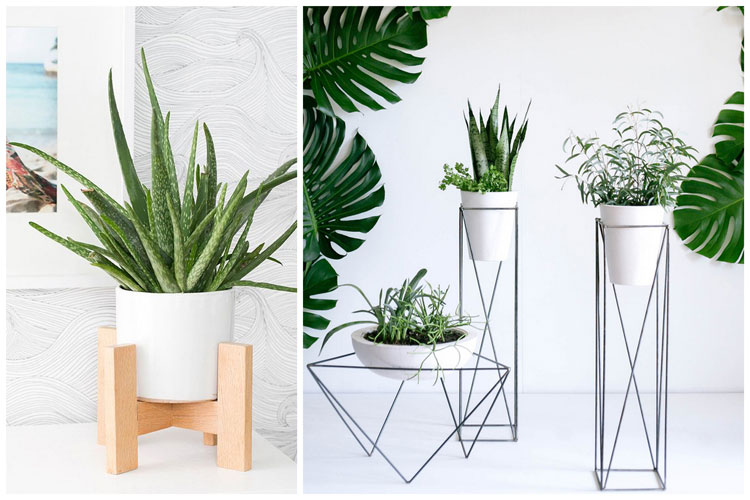 Support de plantes d interieur for Plante pour interieur
