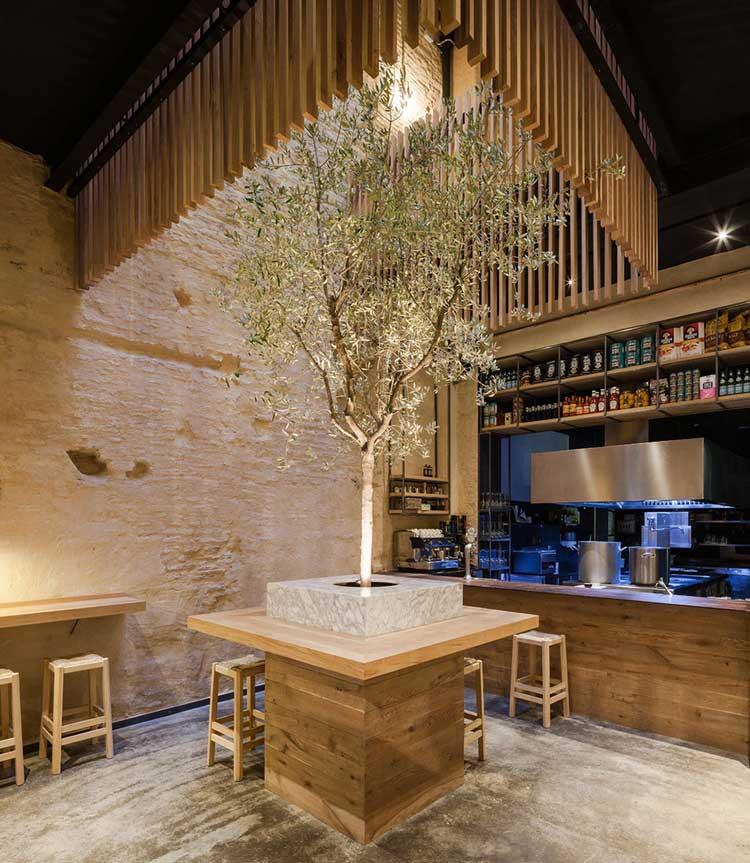 arbre dans pation interieur