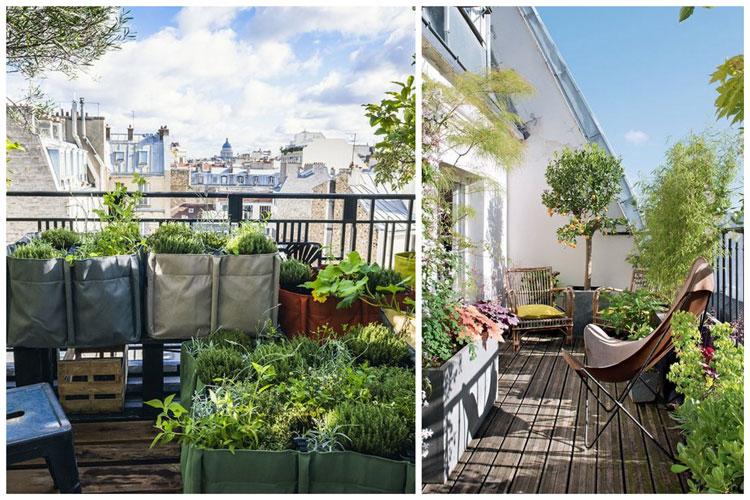 Amenager votre balcon avec des plantes