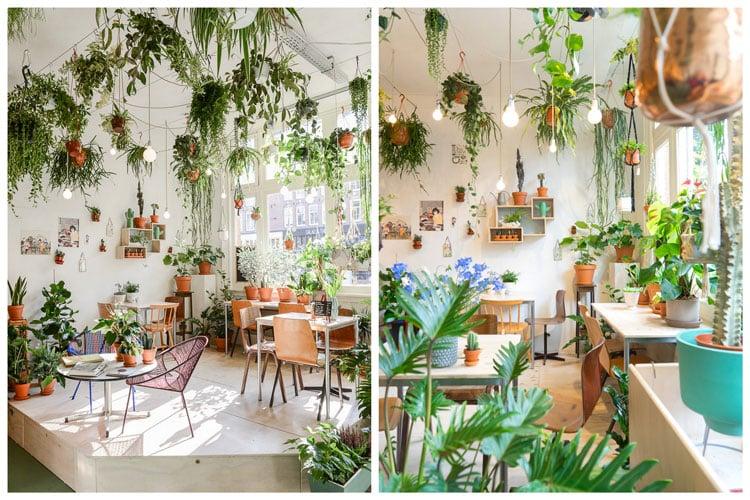 14 Idees Pour Decorer Sa Maison Avec Des Plantes Vertes