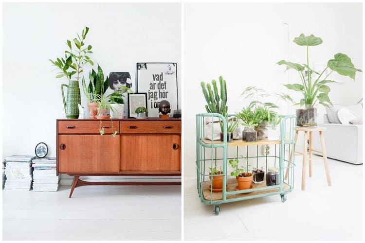 deco interieur avec des plantes