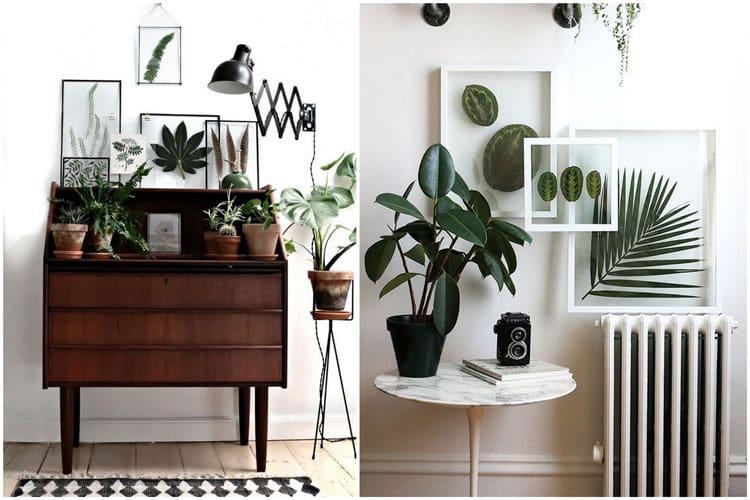 14 id es pour d corer sa maison avec des plantes vertes. Black Bedroom Furniture Sets. Home Design Ideas