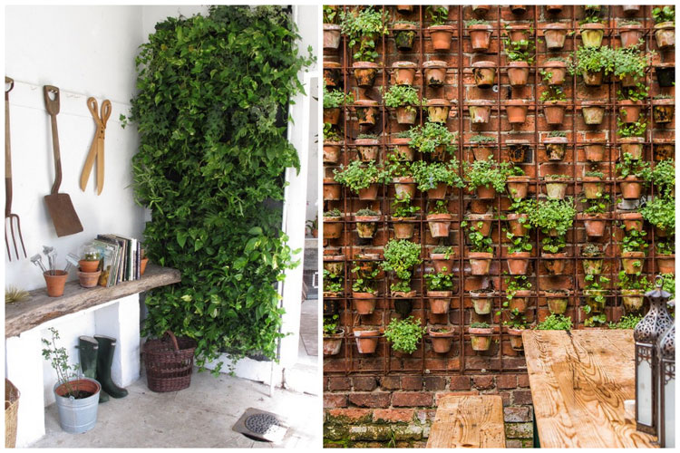 Creer un mur vegetalise interieur
