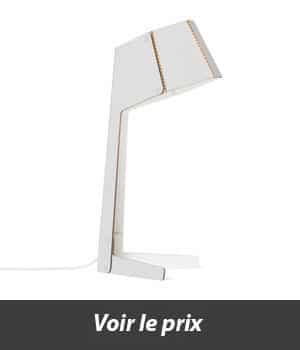 lampe en carton