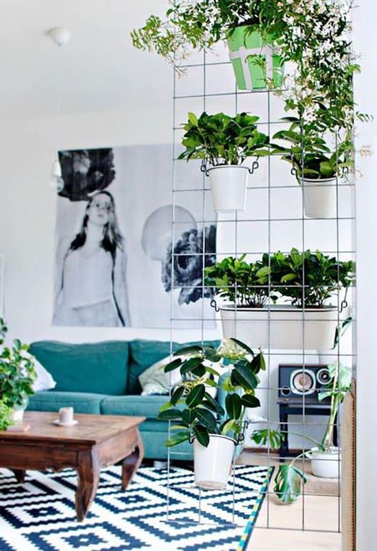 Grillage avec plantes servant de séparation