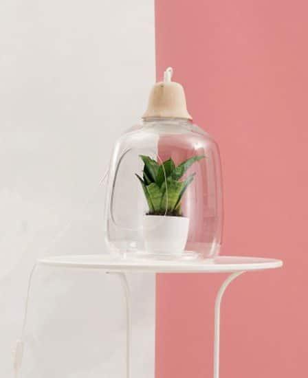 Une lampe serre pour accueillir des plantes vertes dans son intérieur