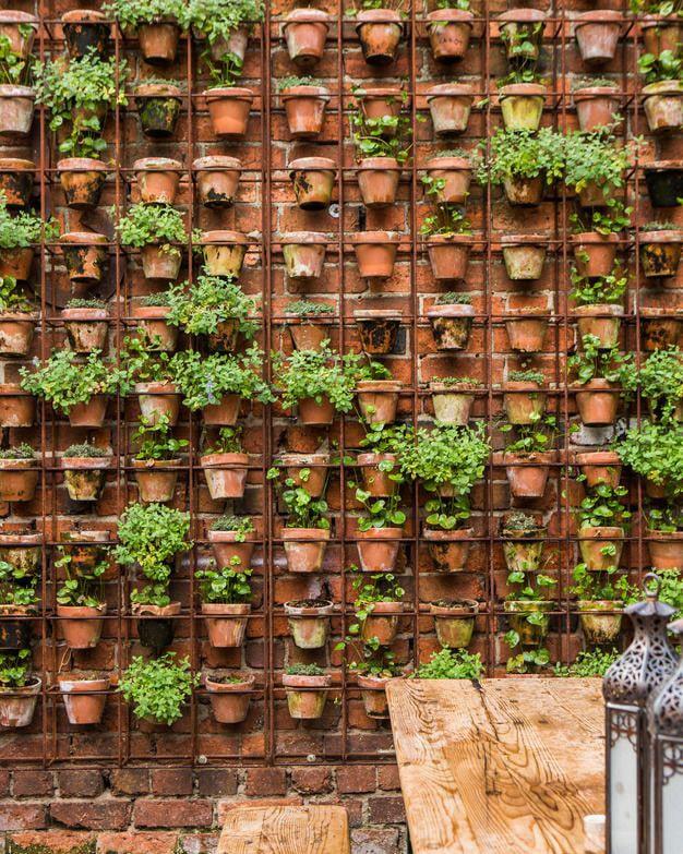 Mur végétal avec des pots de fleurs