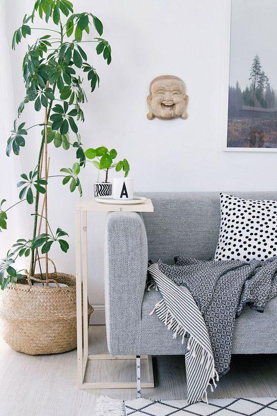 Un panier en osier pour vos plantes