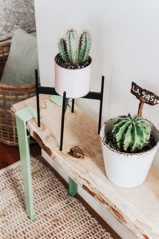 Pot de plantes sur banc DIY