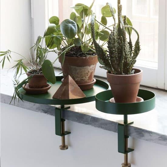 Plateaux à visser pour disposer vos plantes sur le rebord de fenêtre