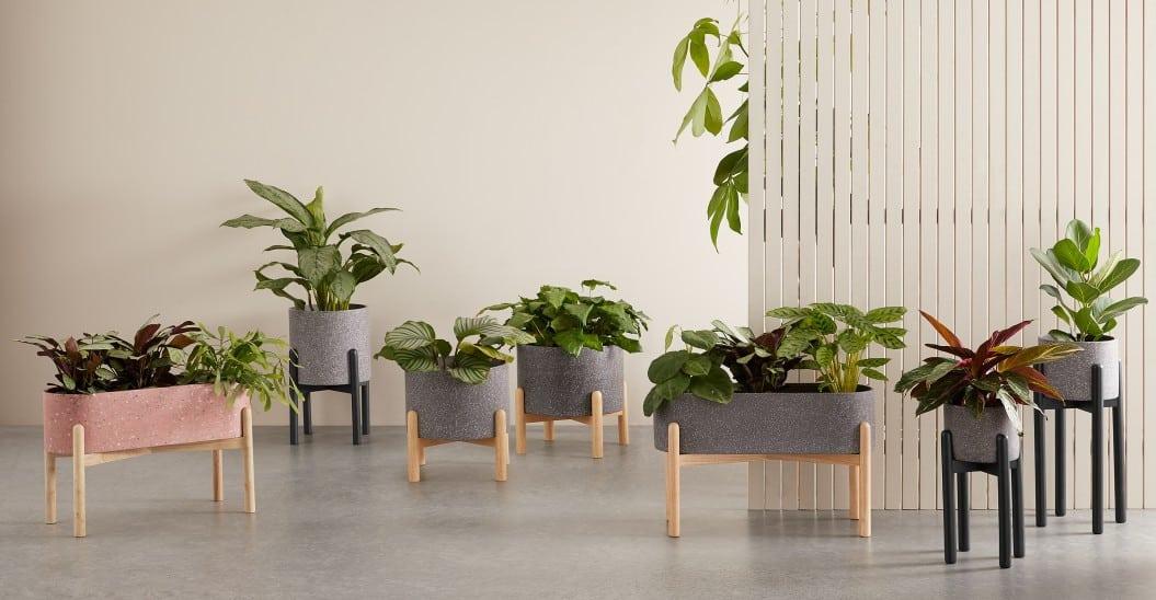 Un support pour plantes d'intérieur