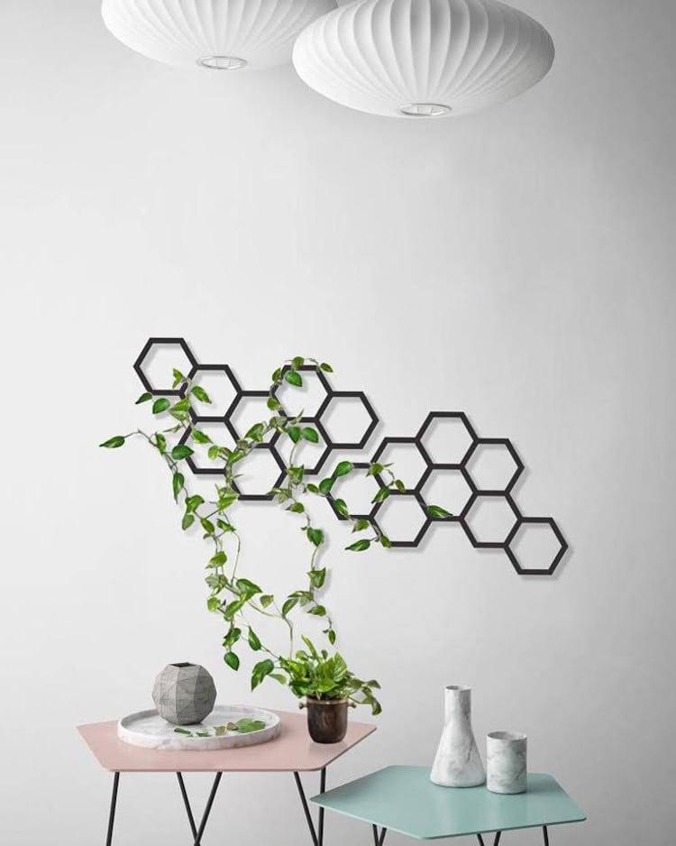 Un treillage pour plantes grimpantes