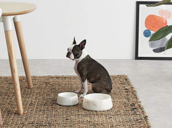 Gamelle pour chien en marbre