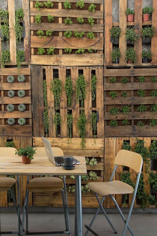 Palettes de bois servant de support pour plantes