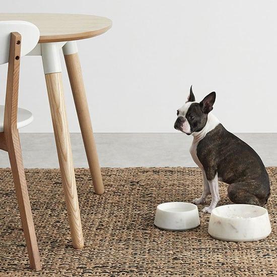 Un accessoire pour animaux raffiné, la gamelle pour chien en marbre