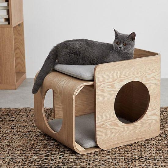 Mobilier pour chat, car eux aussi méritent des accessoires pour animaux design