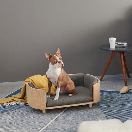Un panier pour chien design : l'accessoire pour animaux indispensable