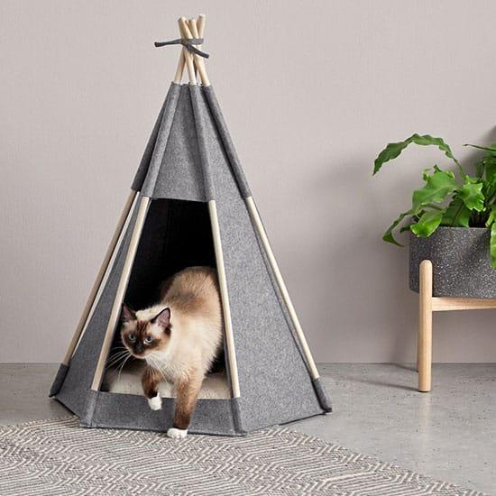 Accessoires pour animaux originaux : le tipi