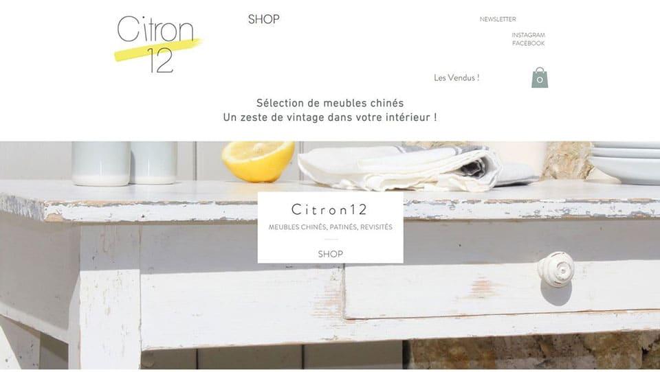Citron 12 brocante en ligne