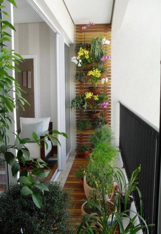 mur végétal sur balcon