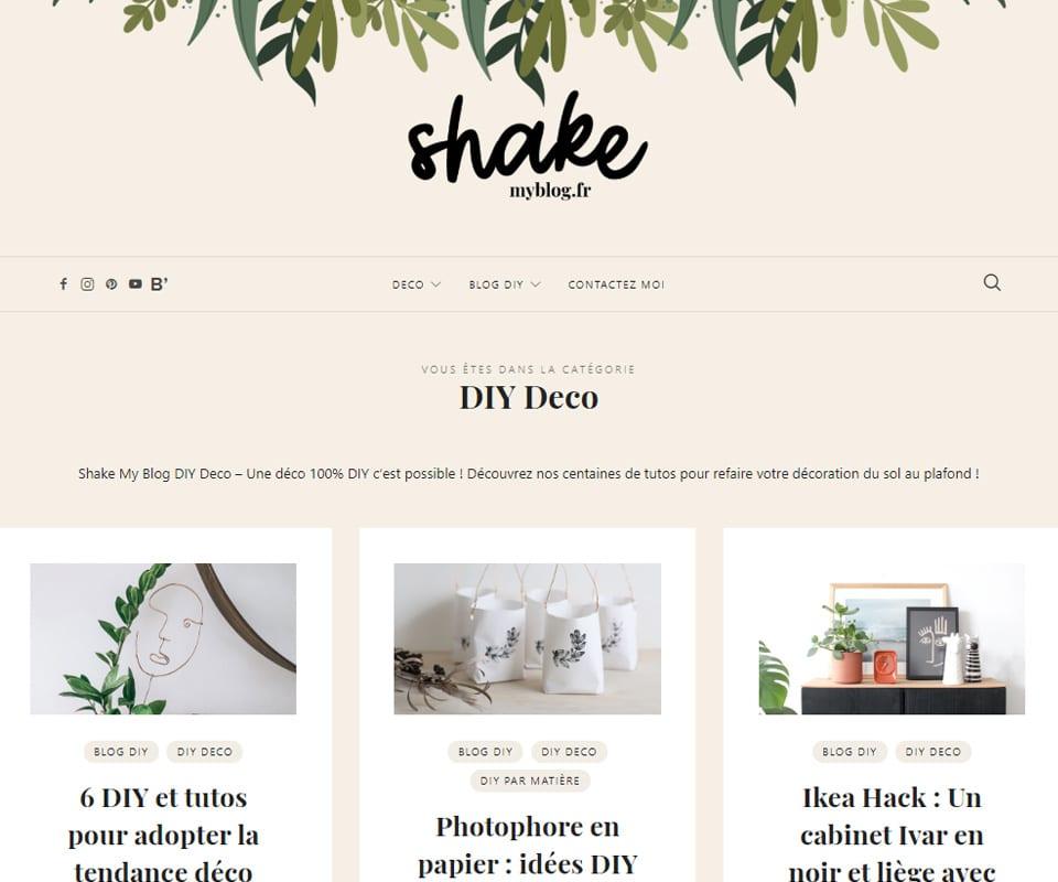 Shake My Blog blog de déco DIY