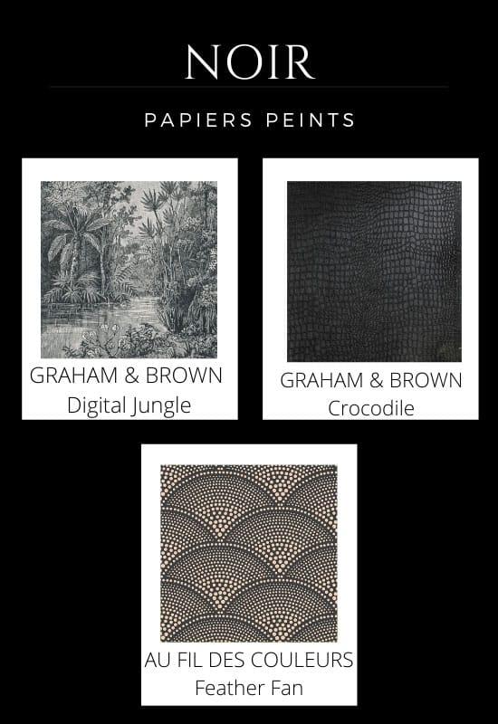 Nuancier papier peint noir