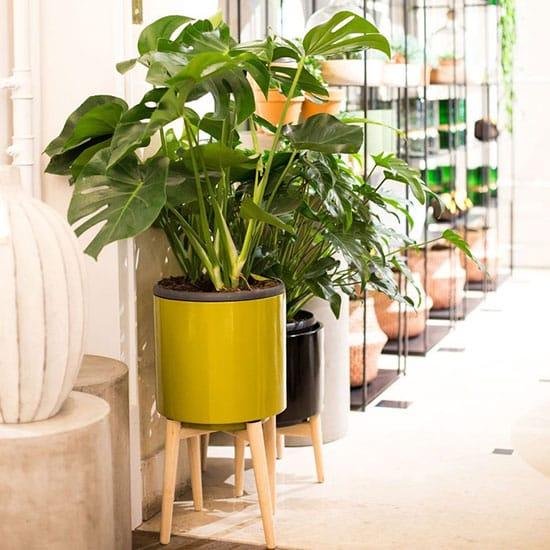Piédestal pour plantes en céramique
