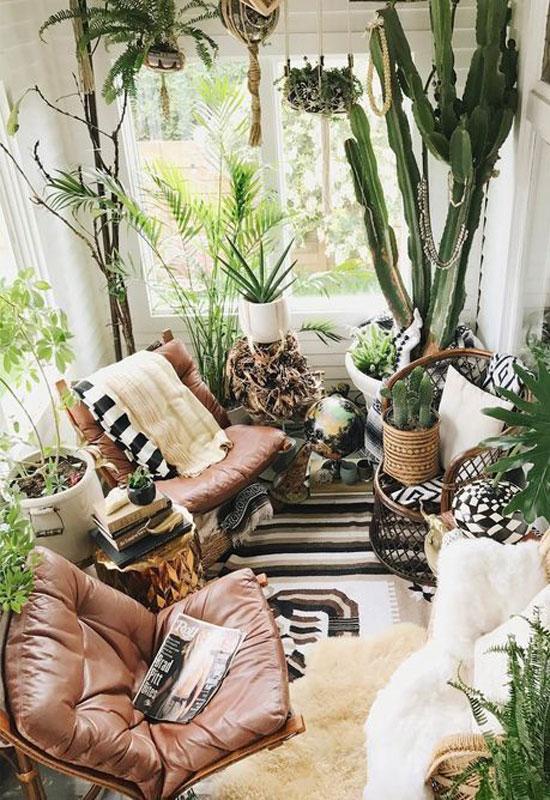 Déco de salon vert cactus