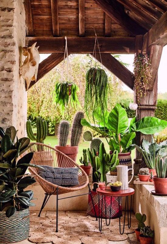 La déco cactus sur une terasse abritée