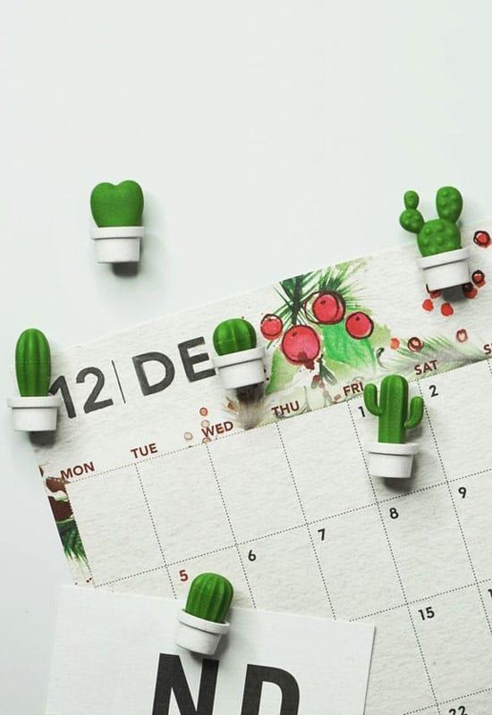 Déco mini cactus en magnets
