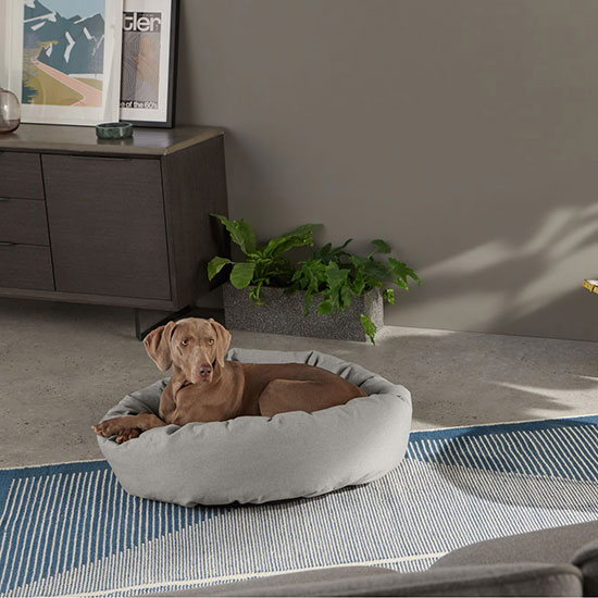 Niche pour chien design, confortable