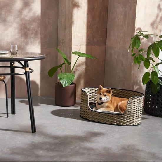 Panier pour chien design, naturel