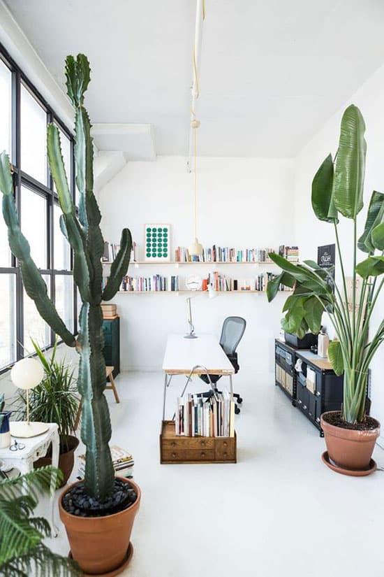 Bureau central dans une pièce blanche, décoration végétale